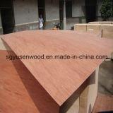 Madera contrachapada del grado de los muebles de la madera contrachapada de la chapa del abedul de la chapa de la madera dura 4*8