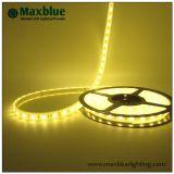 Luz de tira flexible de DC12V/24V LED con Ce 3 años de garantía