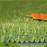 Трава фальшивки сада хорошего качества Qingdao Csp004-1