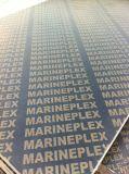 Contre-plaqué filmé/contre-plaqué Shuttering de coffrage/contre-plaqué de construction