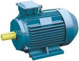 Drehstrom-Motor (Y-Serie)
