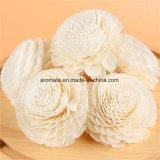 La decoración del hogar del aroma difusor de la caña de flores (SF057)