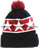 Échantillons gratuitement, plus chapeau tricoté par Beanie tissé de broderie mélangé par couleur