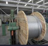 AAC 150mm2 Conductor