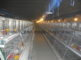 Egg Laying Chicken Cage para la granja de aves de corral