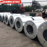 Bobina d'acciaio galvanizzata da Camelsteeel in Shandong