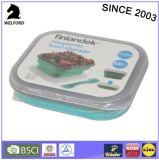 Heißer verkaufender zusammenklappbares Silikon-faltender Filterglocke-doppelter Kasten-Mittagessen-Kasten