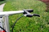 Populärer chinesischer Herstellungs-Stahl 20 Zoll elektrisches Fahrrad faltend