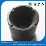 Permanenter harter Ferrit-Zylinder-Magnet-Ring für Pumpe