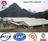 Stahlkonstruktion-Schwein-Haus/Geflügel bringen von China unter