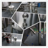 100L to 5000L Rep Batch Beer Brewery Equipment