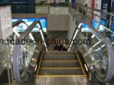Escada rolante automática de 35 graus de Fujizy