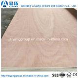 madera contrachapada comercial del cedro de lápiz de 12m m para el mercado de Francia