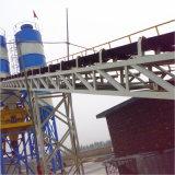 Concrete het Groeperen hete van de Verkoop (HZS120) Installatie