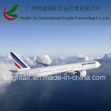 Frete Forwarder From China Mainland a Peru