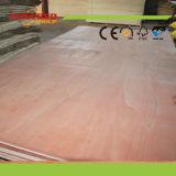 Madera contrachapada barata de la hoja de la madera contrachapada de la madera contrachapada para el embalaje