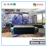 UV Flatbed Printer 2.5*1.3m de Printer van Inkjet