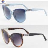 Os óculos de sol de venda quentes do plástico do frame das mulheres as mais novas