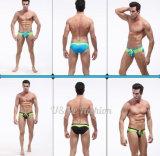 제조 중국 섹시한 수영복 간결 남자를 위한 낮은 상승 수영 적요
