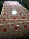 Shandong에서 꽃 디자인 백색 기초를 가진 PPGI