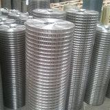Rete metallica saldata quadrato dell'acciaio inossidabile