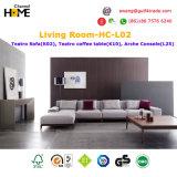 Sofá vivo harmonioso e moderno confortável novo (HC-T08)