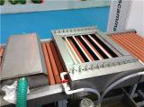 La sûreté commode actionnent le lavage horizontal de matériel et la machine de séchage