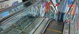 Escalator automatique de 30 degrés de Fujizy