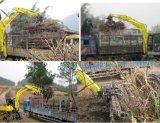 Excavador de la rueda del cargador de la caña de azúcar del cargador de la caña de azúcar del rinoceronte para la venta 8ton 12ton