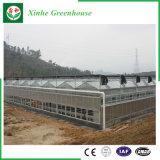 차양 시스템을%s 가진 꽃 또는 과일 또는 야채 성장하고 있는 유리제 온실