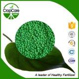 Beschwichtigungsmittel gründete NPK Düngemittel 16-16-16 für Ertragskultur-Frucht-Gemüse