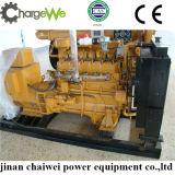 Conjunto de generador del gas de Chargewe (biogás o gas natural)