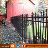 Cerca decorativa elegante europea barata de la casa de la cerca del hierro