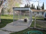 Fabricante de jaula grande barata soldada al por mayor del perro del acoplamiento de alambre
