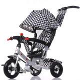O veículo brinca o triciclo do carro de bebê com pushrod