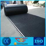 Einzelner seitlicher Grübchen-Grün-Dach-Entwässerung-Plastikvorstand