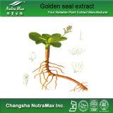 Alcaloïde naturel d'extrait de racine de scellement d'or de 100%
