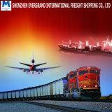 Consolidamento certo del compratore di trasporto della Cina in Africa