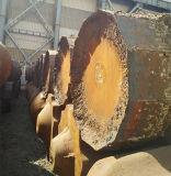 Colonna montante di effetto di alta alimentazione per la fonderia d'acciaio