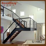 Стальная деревянная лестница Railing Baluster штанги для крытого (SJ-3019)