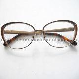 Vetri alla moda Fram Eyewear ottico di buona qualità di fabbricazione della Cina