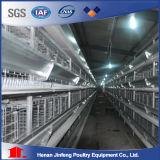 Heet verkoop het Automatische Systeem Van uitstekende kwaliteit van de Kooi van de Kip