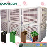 Greenhouse를 위한 최신 Sale Evaporative Cooling Pad