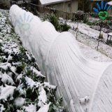 부동 겨울은 농업 덮개를 위한 비 길쌈한 직물을 보호한다