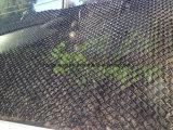 HDPE細胞ロードサポートのための砂利の格子の織り目加工のGeocell
