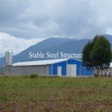 Helle niedriger Preis-Huhn-Stahlbauernhöfe in Nigeria
