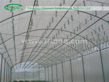 HandelsTunnel Film Greenhouse für Tomato Growing