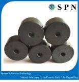Anelli a magnete permanente sinterizzati magnete del ferrito
