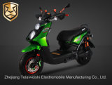 1200W Powerful Motor Professional Widen Tyre Electric Bike