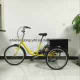24inch Cargo Tricycle/Trike con Rear Steel Box